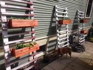 Hanging Planter Boxes